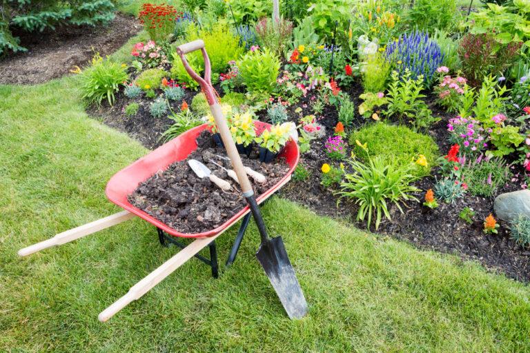 Best Home Gardeners In Auckland
