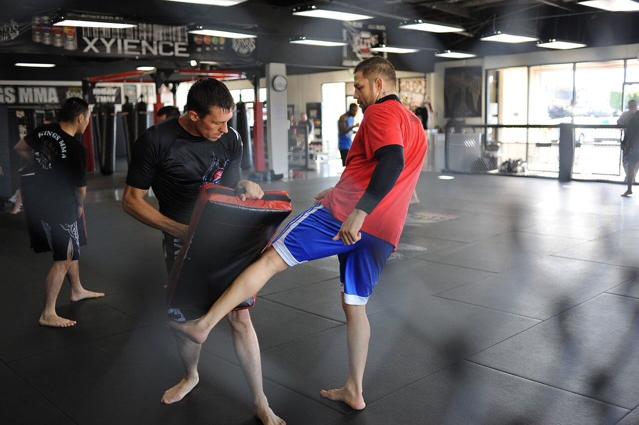 best auckland mma gyms nz
